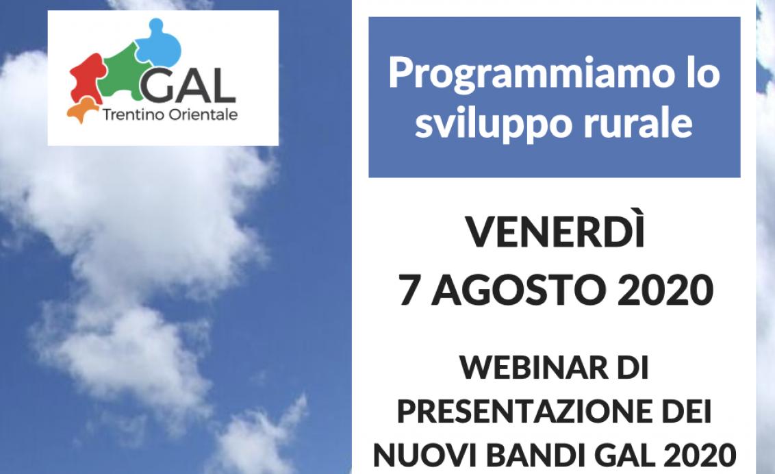 Webinar presentazione bandi GAL 2020